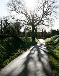 Kay Westhues, Road to Saint Brigid's Well, County Kildare, Ireland